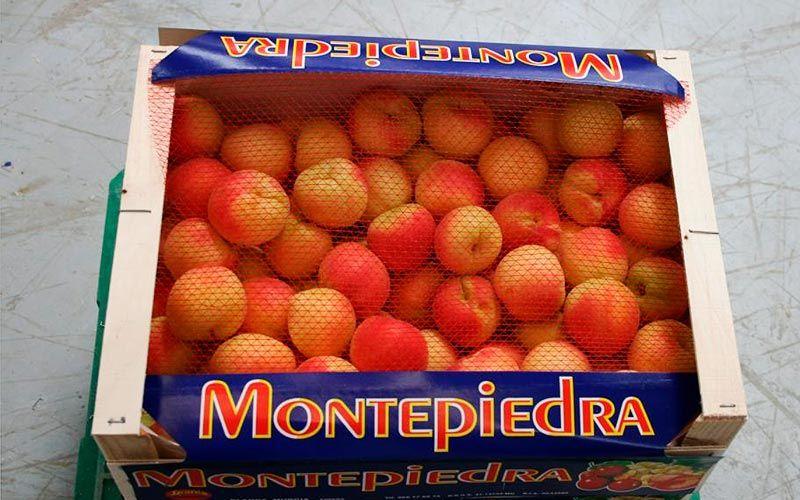 Albaricoques Montepiedra